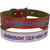 Custom Catch Personalized Dog Collar Leather